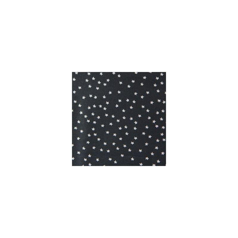 Toile noire étoiles naturelles