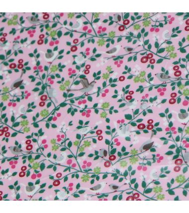 Frou-Frou gecoat vogels rosa