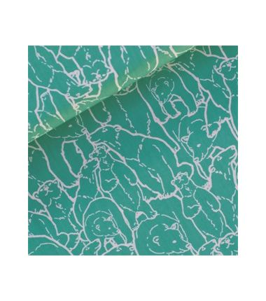 Polar Party turquoise clair